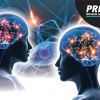 Prism Mind Mapping: where Innovation meets Science